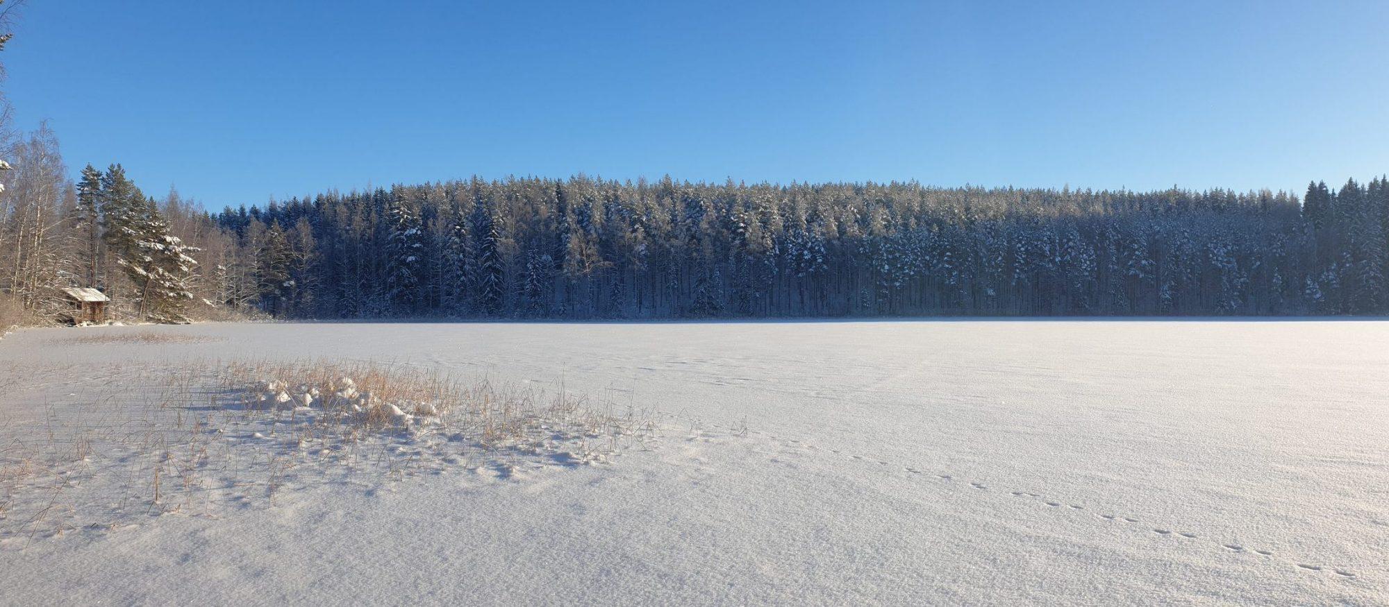 Talvinen järvi
